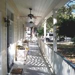 Porch under canopy of 100 year old Oaks