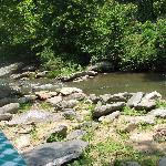  View of Rocky Broad River Fron the Sunflower House Cabin&#39;s Rear Porch
