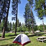 Foto de McCloud Dance Country RV Resort