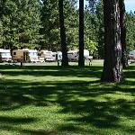 Foto McCloud Dance Country RV Resort