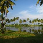 Foto di Manor Backwater Resort