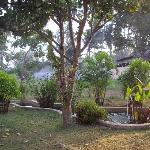Nice garden, all rooms have similar view