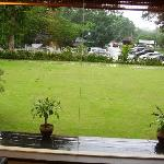  View of the lawn from inside the reception area