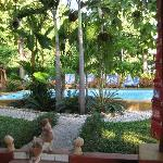 Photo of Guesthouse Liam's Suan Dok Mai