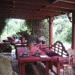 The veranda at Tree Crop Farm