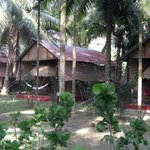 Island Vinnies Tropical Beach Cabana Havelock Island