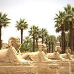 Photo of Club Med Louxor Luxor