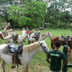Photo de Banana Bank Lodge & Jungle Horseback Adventure