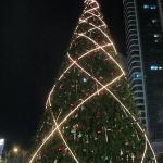 When I was small.... the christmas tress were tall.....