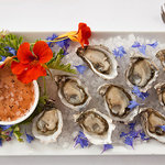 Local Kumomoto Oysters