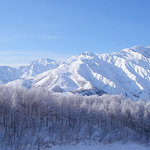 Hakuba Iwatake Ski Resort/Lily Farm a& Mountain View