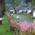 Foto Berastagi Cottages