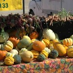 Longmont Farmers' Market