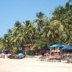 Foto de Palolem Beach Resort