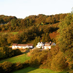 Parsons Grove Holiday Cottages and Bed and Breakfast