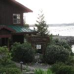 Bild från HI-Tofino - Whaler's on the Point Guesthouse