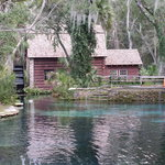 ‪Juniper Springs Recreation Area‬