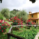 Villa Oliveto Bed &amp; Breakfast