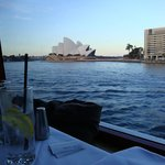 Sydney Famous Seafood Lunch Cruise - Alan Corporation
