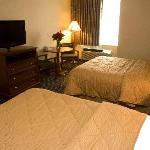 Photo de Comfort Inn Livonia