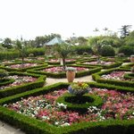Bermuda Botanical Gardens