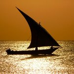 Special Sunrise Cruise - Dhow Safaris