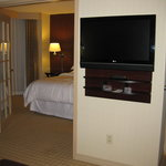 Sheraton Suites Chicago Elk Grove resmi