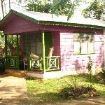 Sweet Sop Cottage at the back of the garden