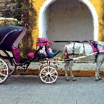 horse buggy in Izamal