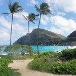 Makapu'u Beach