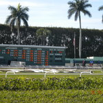 ‪Palm Beach Kennel Club‬