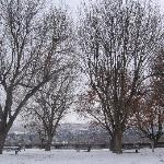  Wenatchee Winter at Riverfront Park