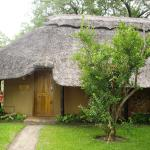 Thorntree River Lodge Victoria Falls