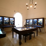 Museo Ignazio Cerio