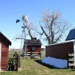 A windmill and some farm buildings at the museum.