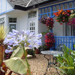 Photo de The Beech Tree Guest House