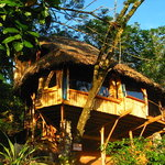Photo of Vanira Lodge