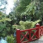 Pukekura Park, New Plymouth NZ