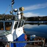 Morning in Glengarriff Harbor
