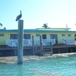 Bay View Inn Motel and Marina resmi
