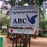 Banteay Srey Butterfly Centre