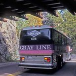 Gray Line of the Black Hills