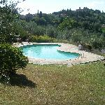 Pool at Villa Sangiovese