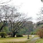 Rikugien Garden