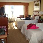 Holiday Inn Pigeon Forge resmi
