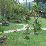  The Gardens at Suria Lodge