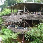 Foto de Amarongachi Jungle Eco-Lodge