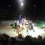 Photo of Medieval Times