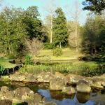 Photo of Bellingrath Gardens and Home