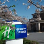 Holiday Inn Exp Pineville